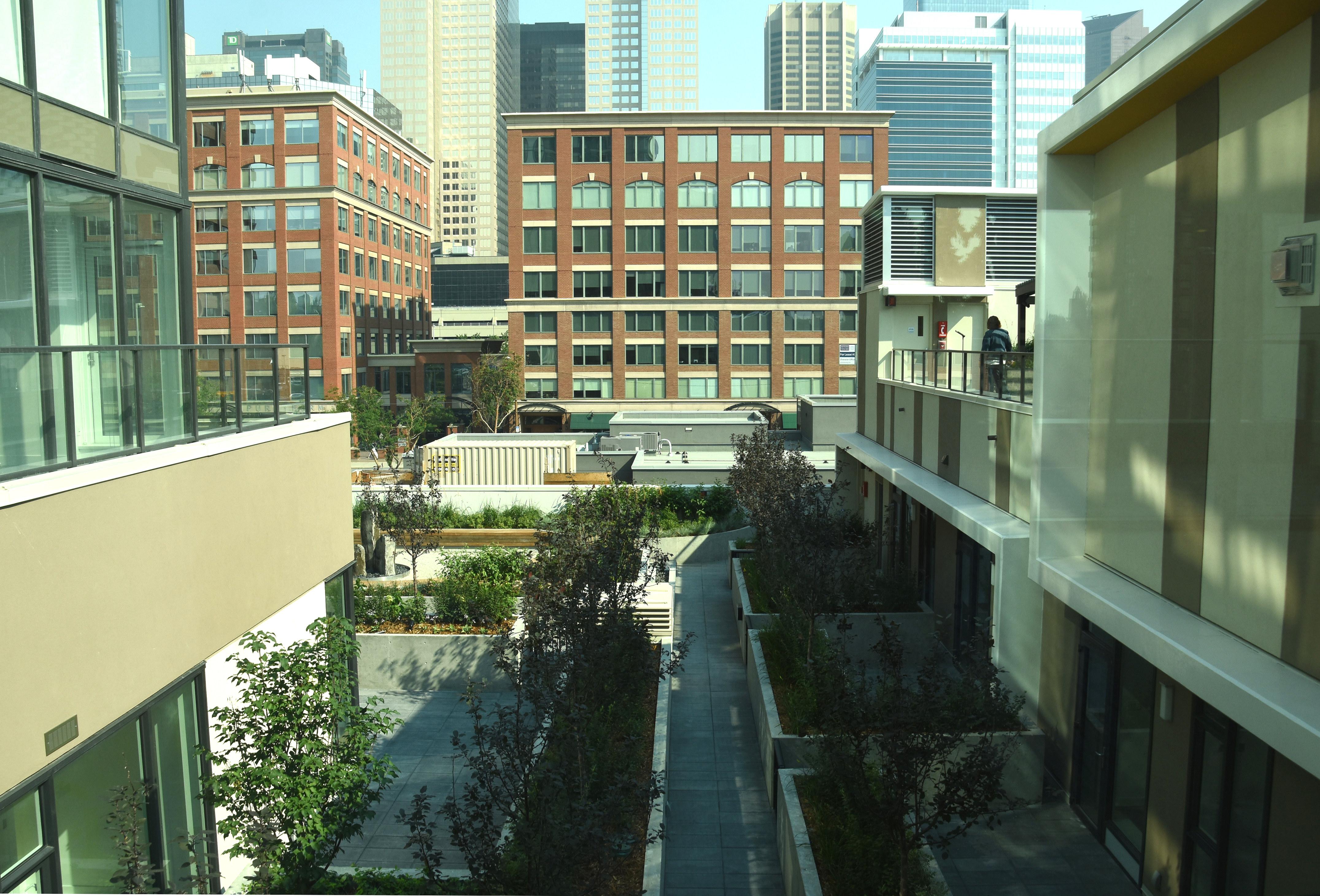 Zen Garden Terrace, image via Kevin Cappis