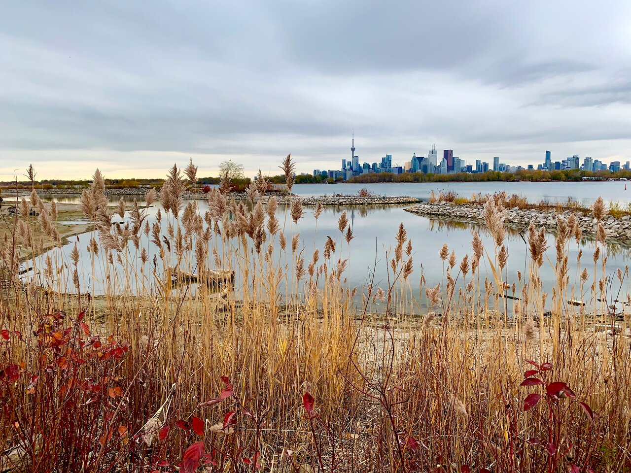 Daily Photo, Toronto, skyline, Downtown, Leslie Street Spit